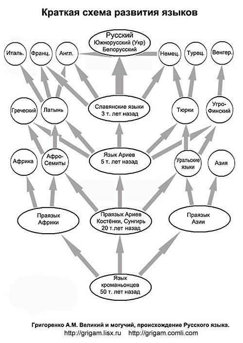 дерево схемы развития
